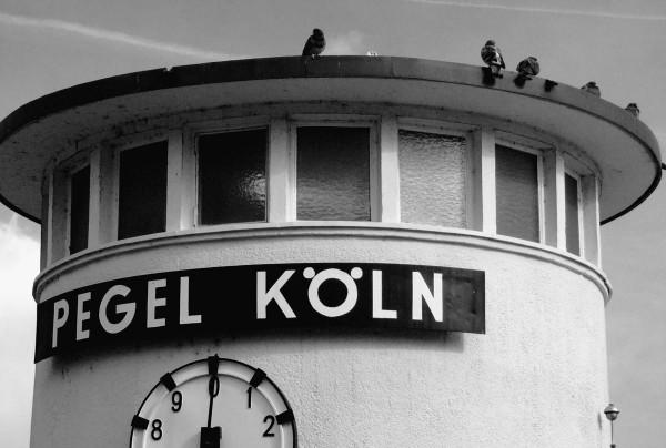 Mini Köln Pegel auf MDF