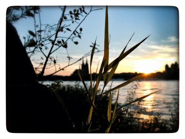 "Fotografie Joachim Rieger ""Sonnenaufgang"" auf Leinwand"