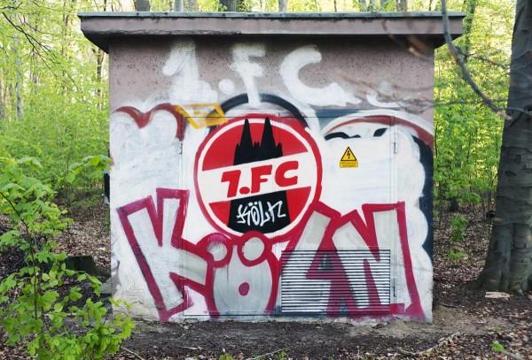 Mini Köln 1.FC Köln III auf MDF