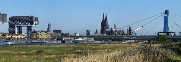 Mini Köln Panorama I auf MDF